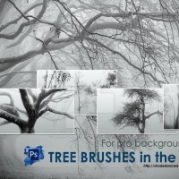 Trees in the Fog - Brushes